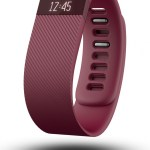 Fitbit Charge L