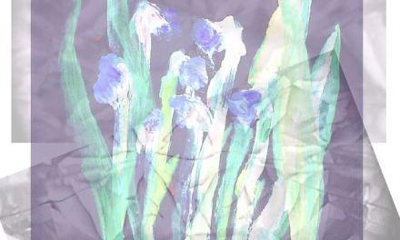 Fanzine Hildegarde – Entretien avec Alice