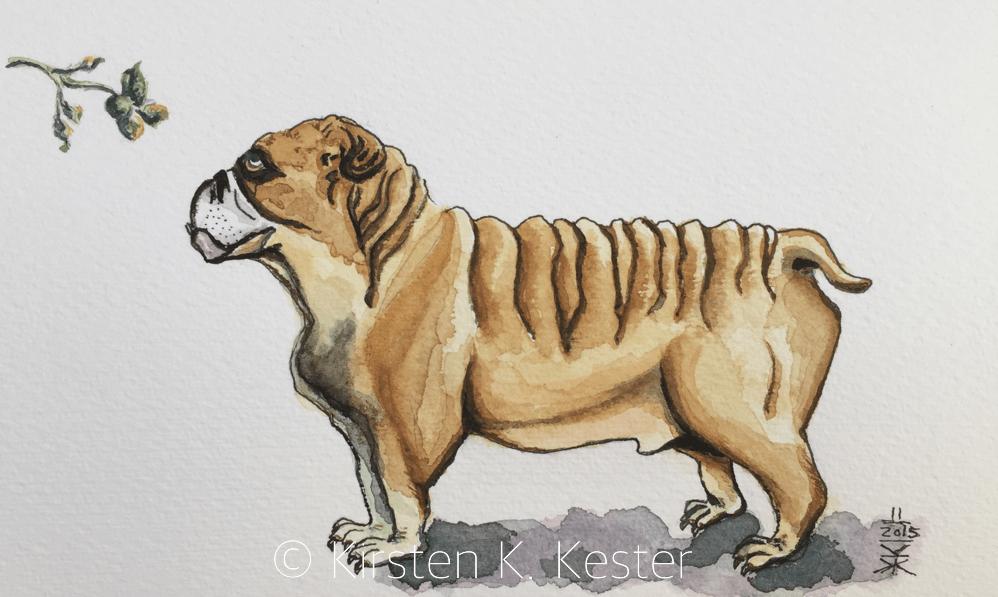Sketching bulldogs © KesterArt.com | Kirsten K. Kester