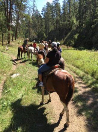 Horse ride trail ketan sharad deshpande Anoka Minnesota
