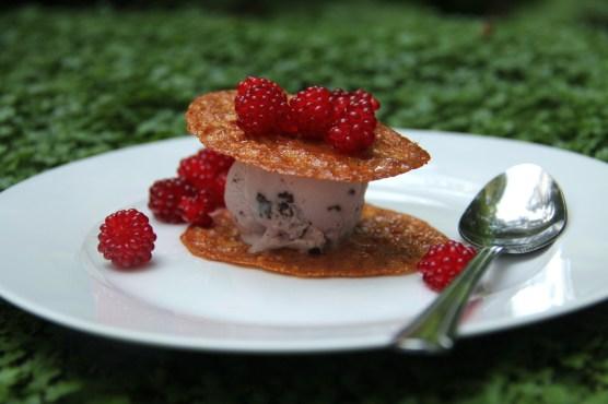 Ice cream top with wine berries © KETMALA'S KITCHEN 2012-13