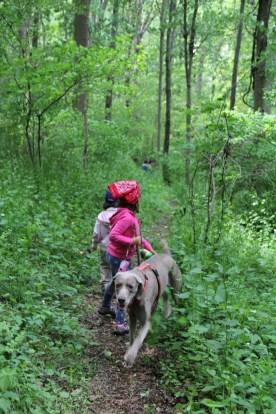 Hiking Wine Berry Picking © KETMALA'S KITCHEN 2012-13
