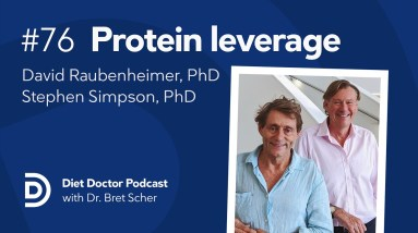 Protein leverage with Professors Raubenheimer and Simpson — Diet Doctor Podcast