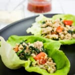 italian style ground chicken lettuce wraps