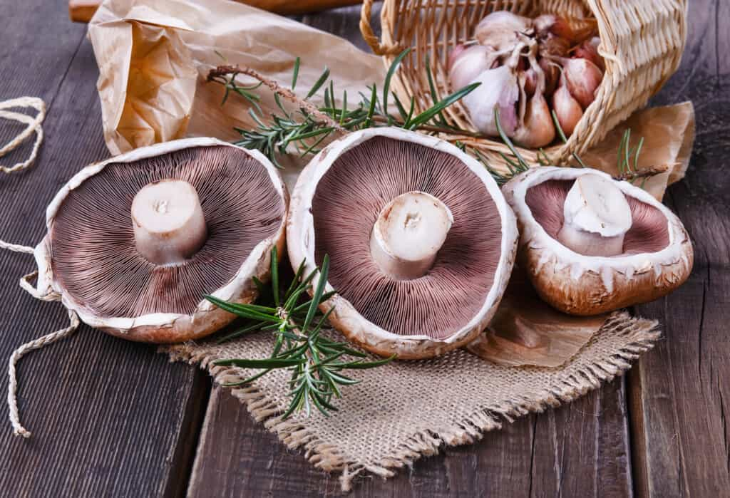 garlic and mushrooms for beef tenderloin steaks with mushrooms