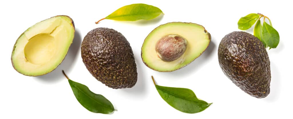 whole and cut avocadoes on a white background with avocado leaves