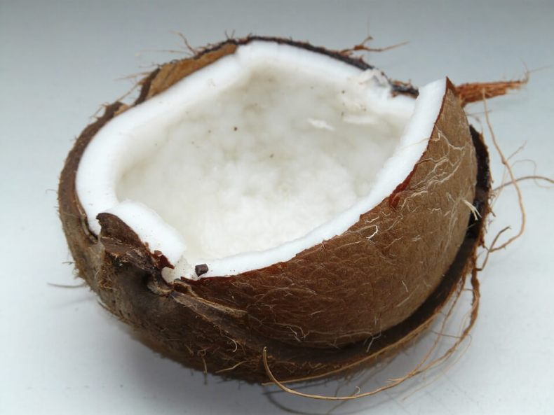 coconut fats