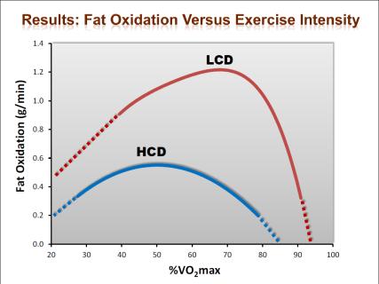 keto adaptation increases fat oxidation
