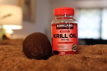 krill oil is a healthy fat