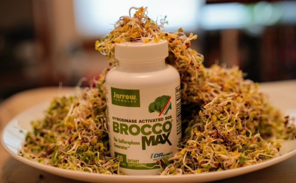 sulforaphane in broccoli sprouts
