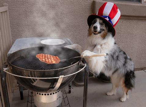 いきなり!ステーキ!3日間限定の肉祭りに行ってきた