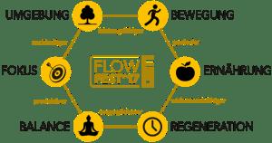 Aspekte des Flows - FlowFest 2017 (©Biotrakr UG)