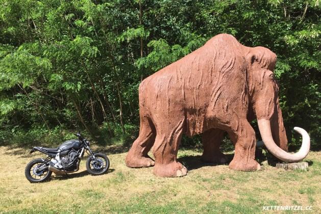 Liebes Mammut, bitte nicht aufs Mopped kacken