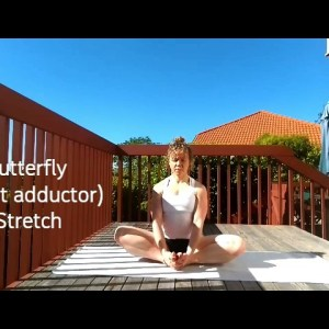 Butterfly Stretch - Universal Flexibility Exercises
