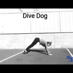 Dive Dog - Universal Warm Up Exercises