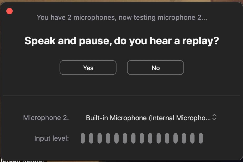 Zoom Speak and Pause