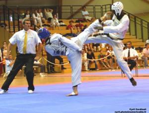 arts martiaux roche