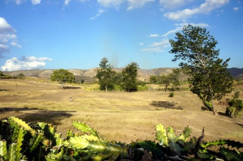 What the countryside usually looks like in Haiti's Central Plateau.