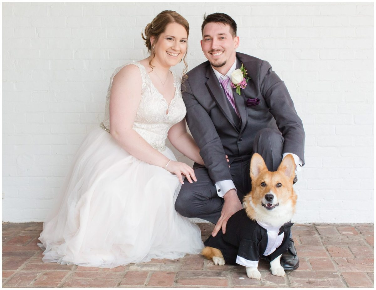 Bride and Groom and Corgi Dog Wedding Photos at Ashford Acres Inn in Cynthiana, Kentucky.