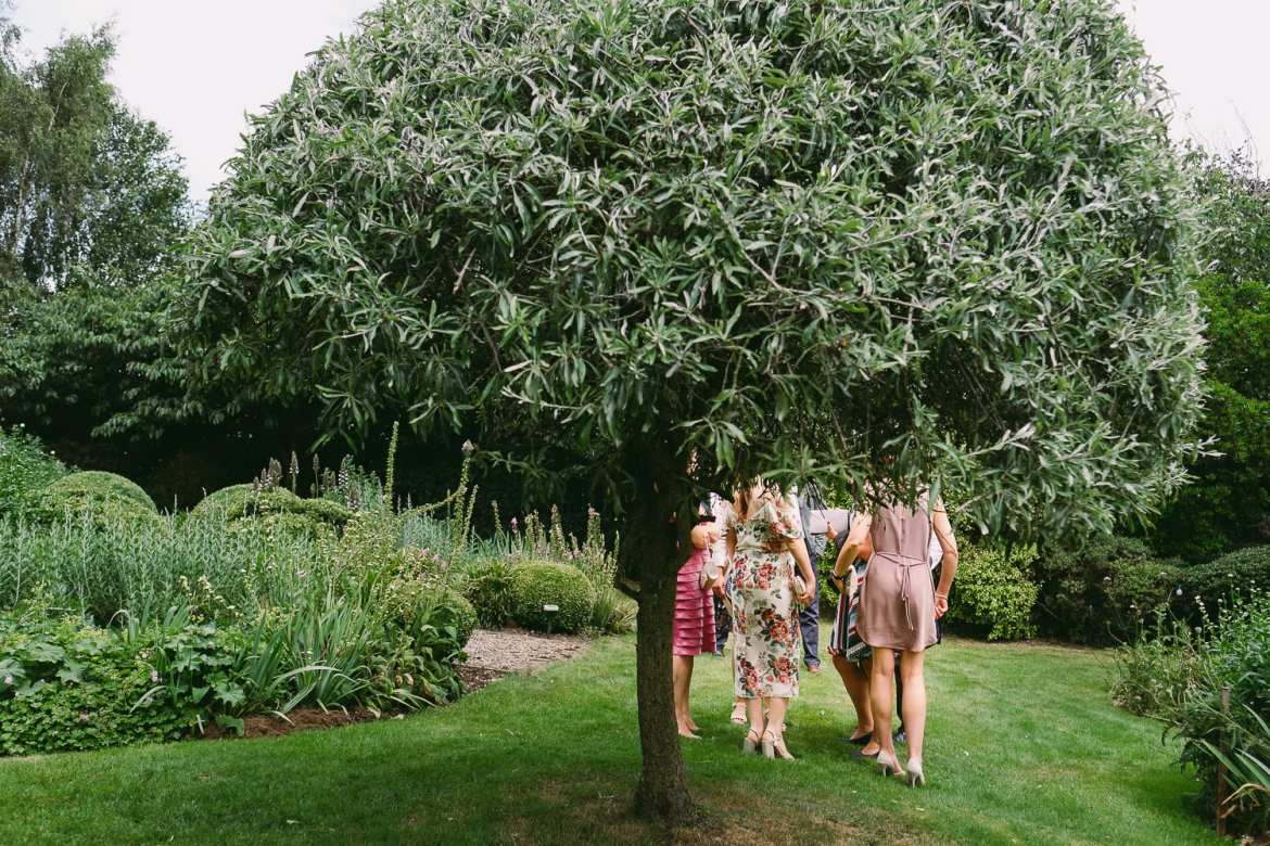 Wedding Guests hidden by a tree