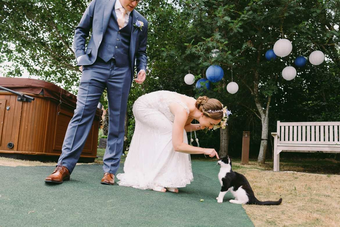 The bride plays with a cat before entering the wedding breakfast
