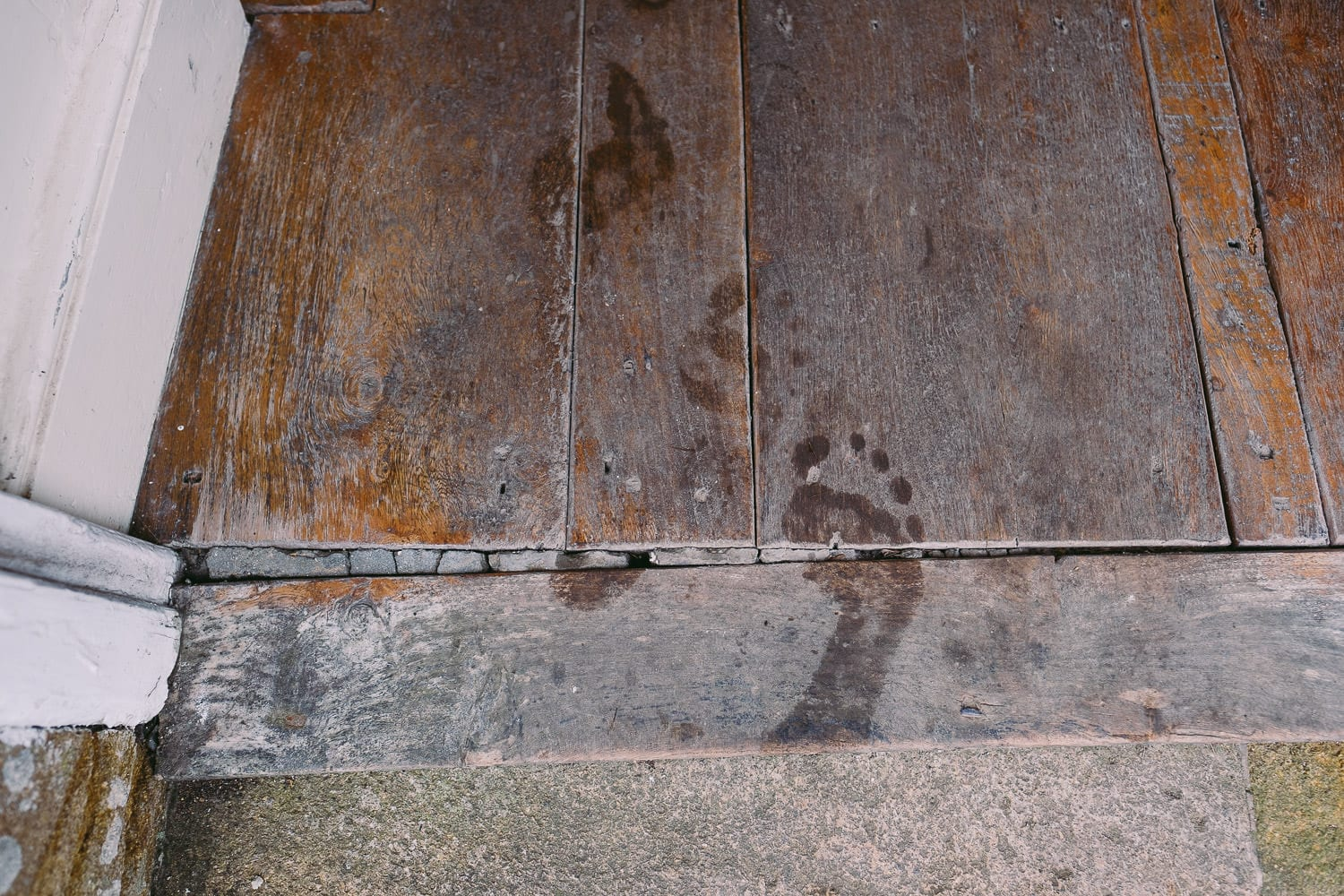Wet footprints on the steps at Brympton House