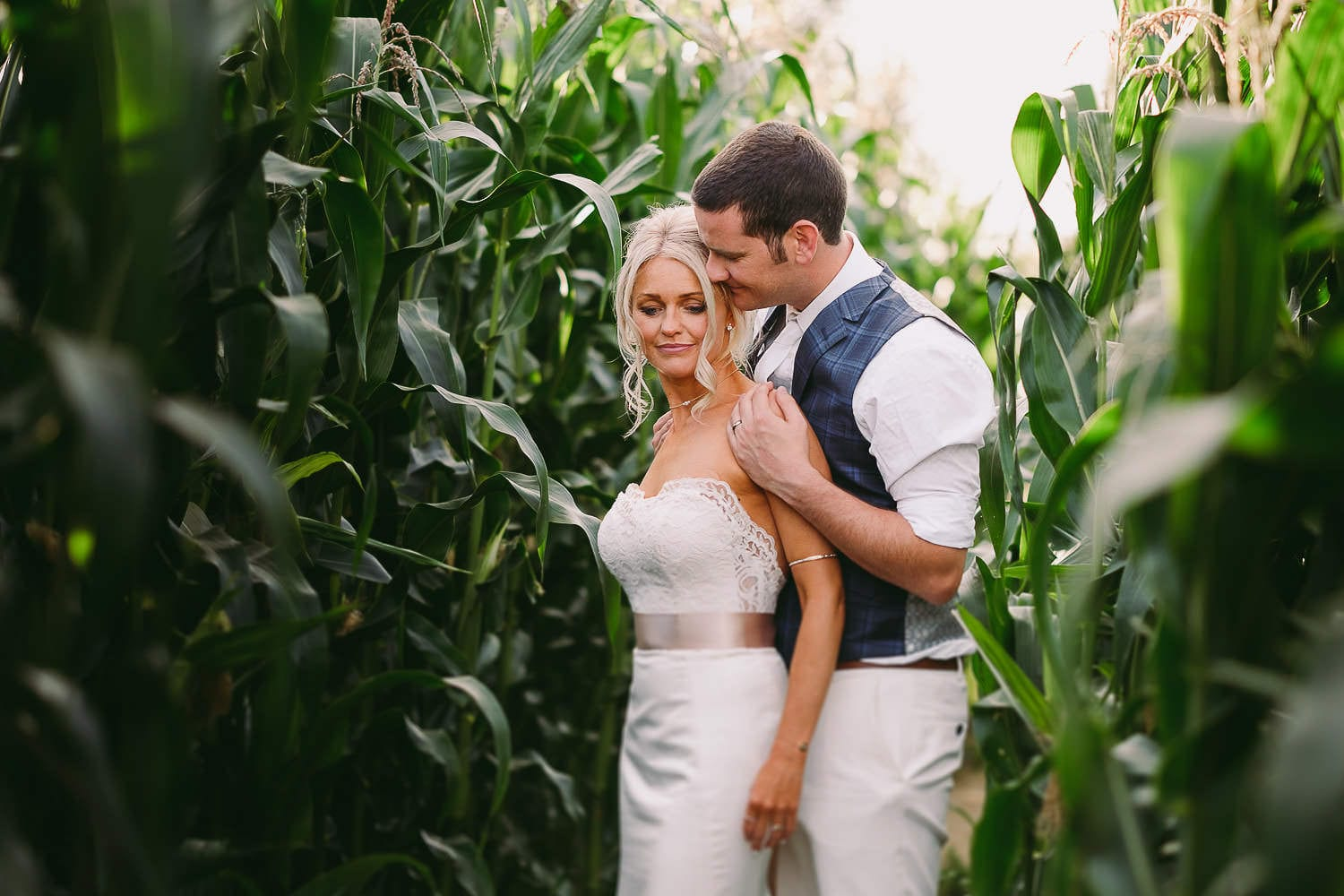 A portrait of the bride and groom in a cornfield