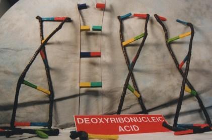 DNA, sculpture 1999.