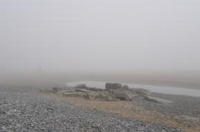 Murlough Beach 9