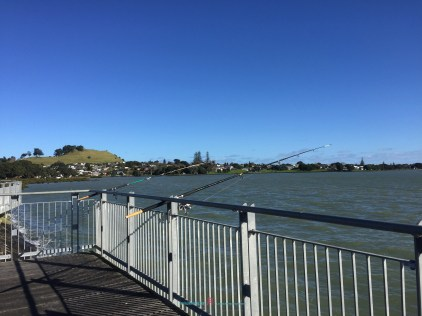 The Place has a strong sense of history.. one concerning of Mangere Mountain in which used to be a Maori Pa site where one was fortified......