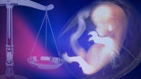 abortion-law2