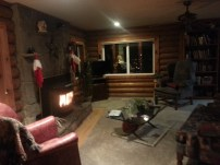 Christmas in a cabin with a fireplace? Sold. Plus the dogs...!