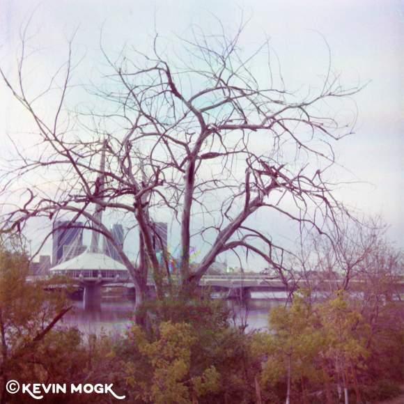 Esplanade-Riel-Winnipeg-Manitoba-Image-01