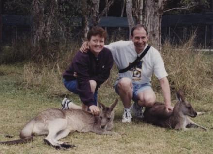 Wallabies in Australia.