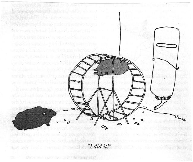 NewYorker Cartoon