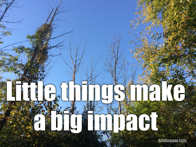 "Photo of dead trees surrounded by green trees. The caption says, ""Little things make a big impact."""