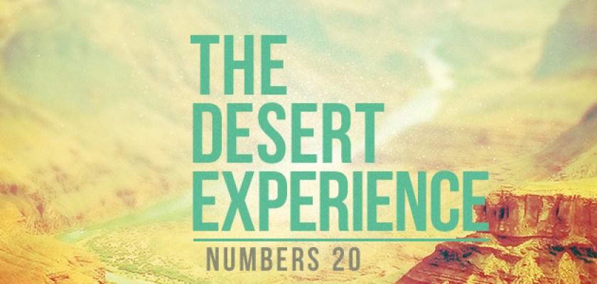 the-desert-experience