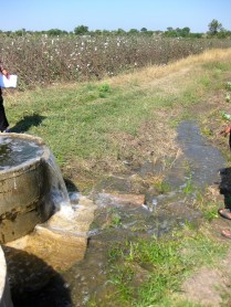Water flowing from the basin into irrigation channels.