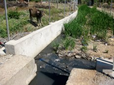 The beginning of the wastewater treatment system.