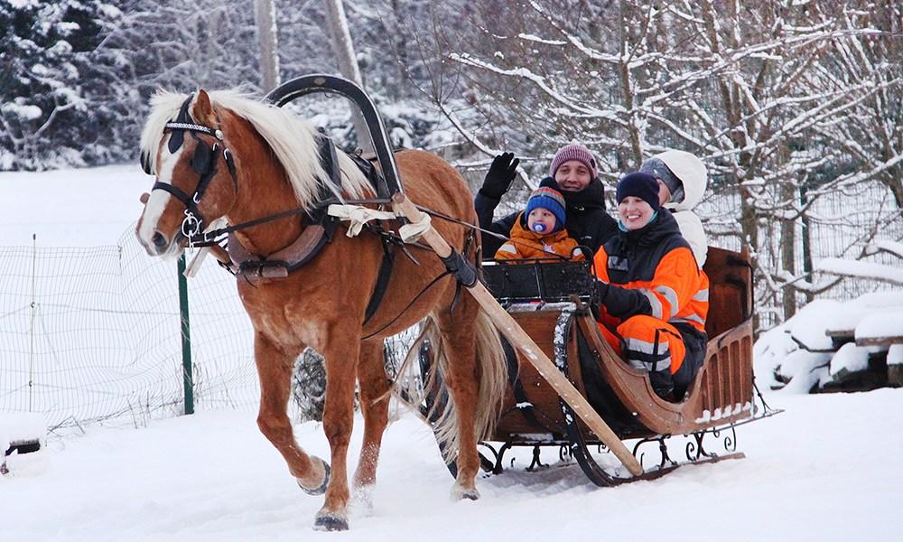 Tabanipäev ehk hobustepüha – 26. detsember
