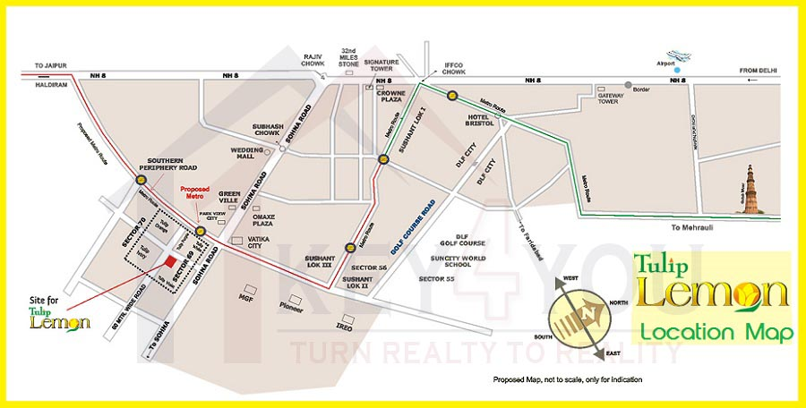 Tulip Lemon Location Map