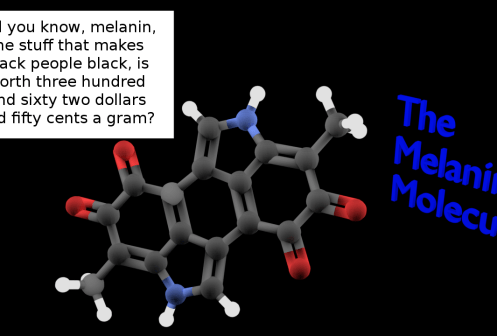 Did you know melanin is worth $362.50 a gram?