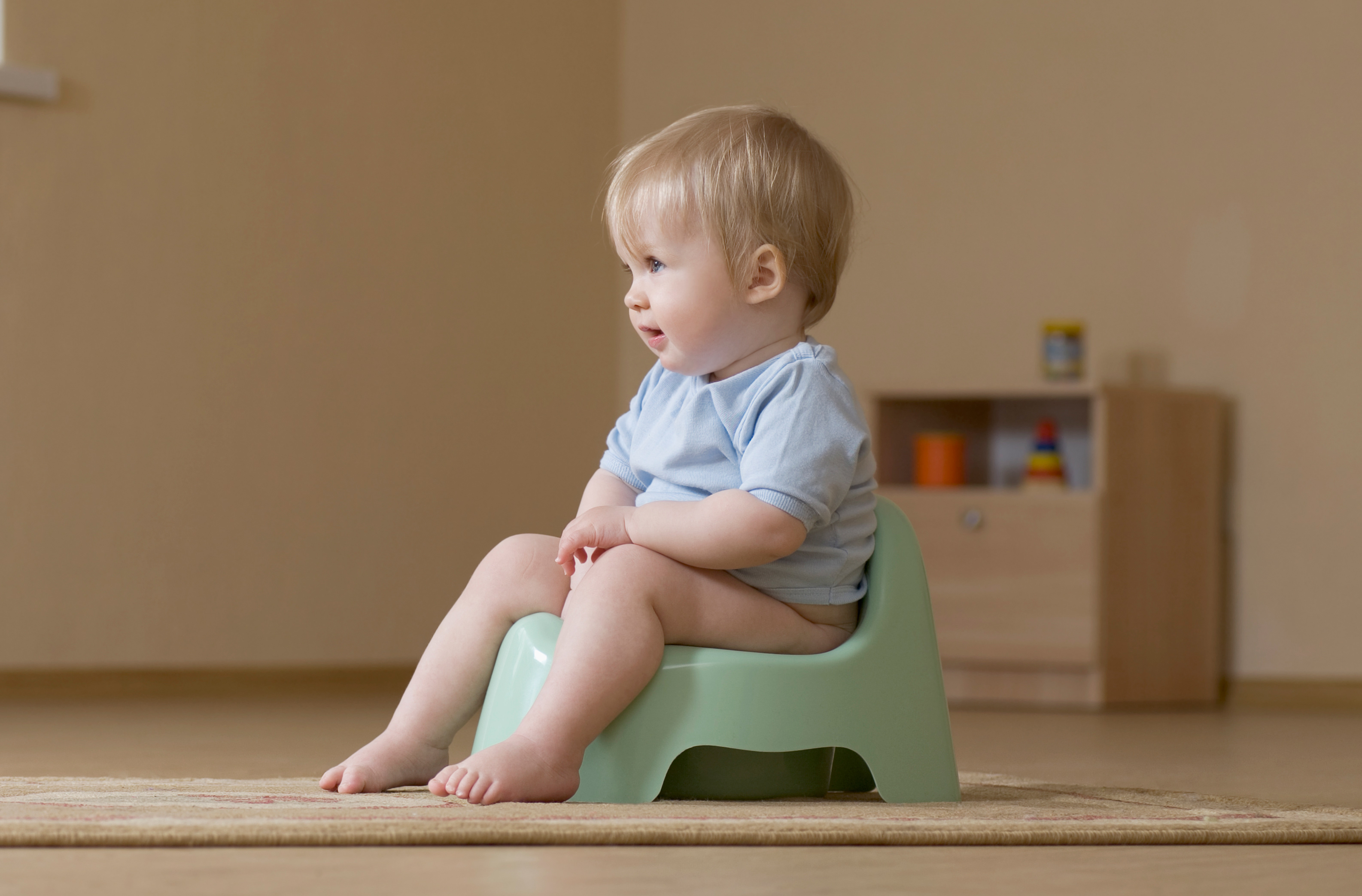 Potty Training Your Ultimate Guide