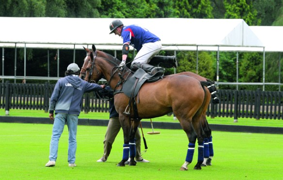 Are ponies changed too often in polo games    Horse   Hound polo rules