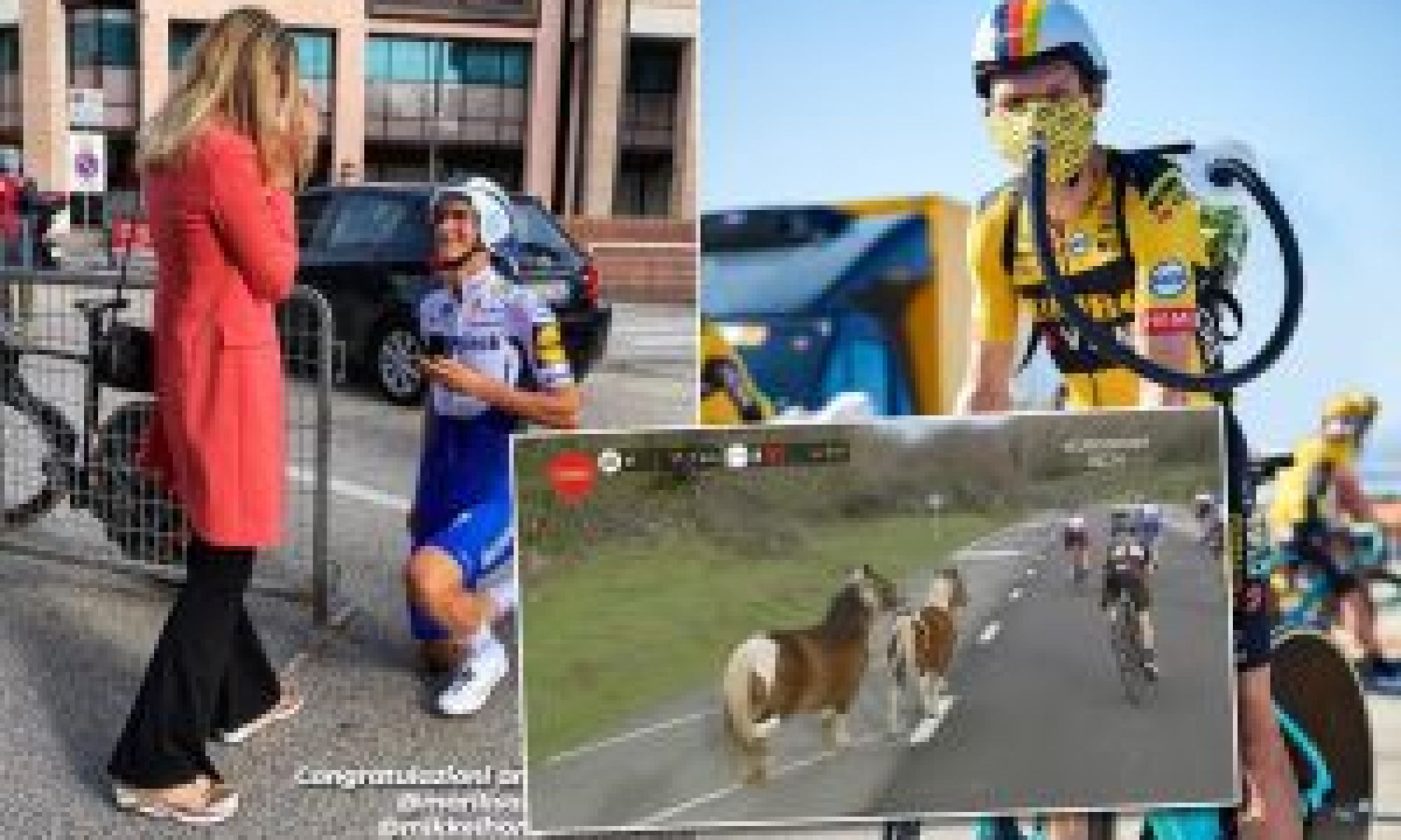 Tweets of the week: Proposals, protests and ponies