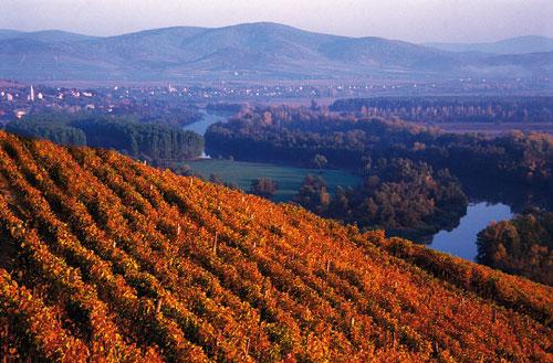 Tokaj – Hungary