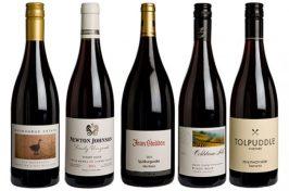 「pinot noir wine」の画像検索結果