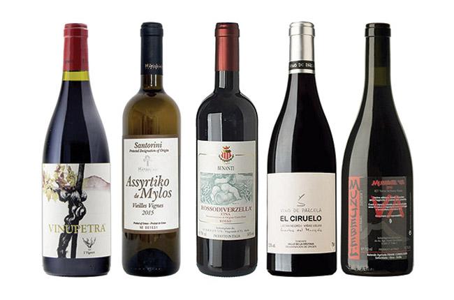 Volcanic wines