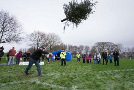tree toss