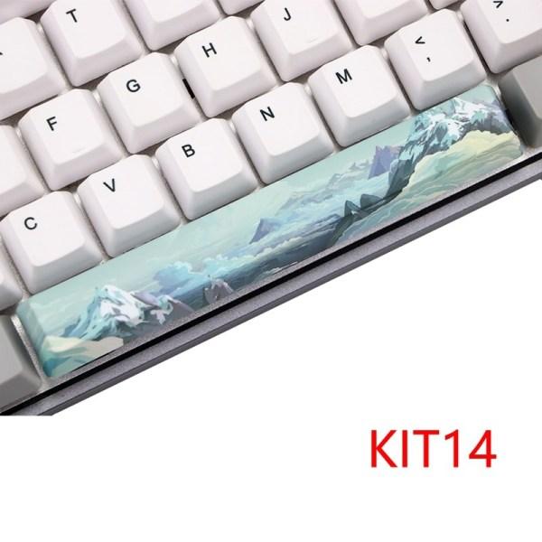 KIT 14_dye-subbed-space-bar-6-25-u-oem-profile-p_variants-10